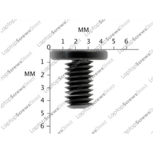 M2 x 4mm Laptop Screws